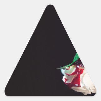 Adesivo Triangular Aumentou o lado branco do vermelho do sangue