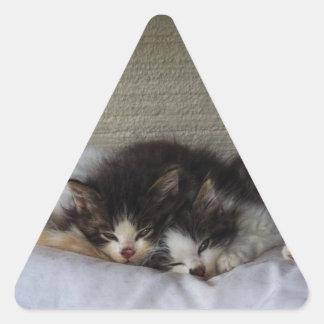 Adesivo Triangular Belas Adormecidas