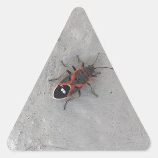 Adesivo Triangular Besouro da pessoa idosa de caixa