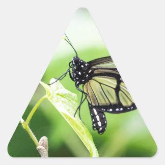 Adesivo Triangular Borboleta de vidro da asa