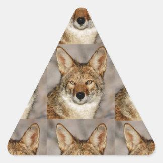 Adesivo Triangular caixas dos chacais