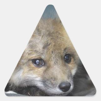 Adesivo Triangular Capa de telefone do Fox