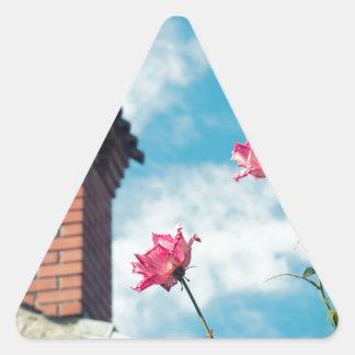 Adesivo Triangular Chaminé e rosas selvagens