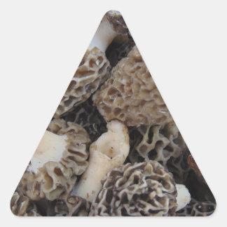 Adesivo Triangular Cogumelos do Morel