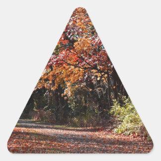 Adesivo Triangular Colapso emocional