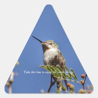 Adesivo Triangular Colibri no ramo por SnapDaddy