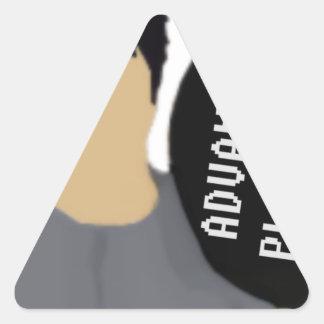 Adesivo Triangular Colocação de Advanceed