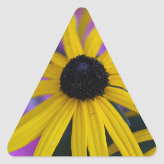 Adesivo Triangular Coneflower constante (fulgida do Rudbeckia)
