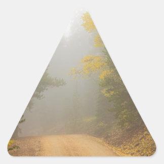 Adesivo Triangular Cruzamento na névoa do outono