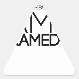 Adesivo Triangular design do paramédico bonito