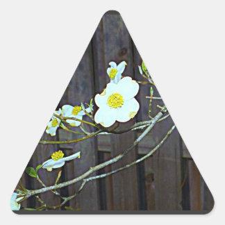 Adesivo Triangular Dogwood de New-jersey
