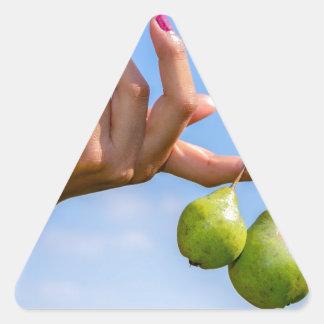 Adesivo Triangular Entregue guardarar duas peras verdes de suspensão