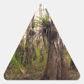 Adesivo Triangular Epiphyte Bromeliad na floresta de Florida
