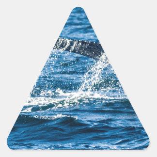 Adesivo Triangular Estado de Washington da baleia de Humpback