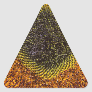 Adesivo Triangular Feche acima do coração do girassol