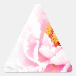 Adesivo Triangular Flor cor-de-rosa chave alta da peônia