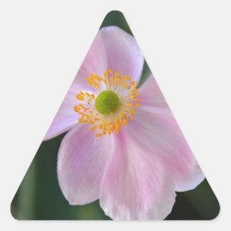 Adesivo Triangular Flor japonesa cor-de-rosa da anêmona