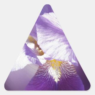 Adesivo Triangular flor roxa da íris