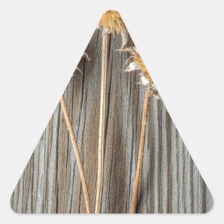 Adesivo Triangular Flor secada de Sun
