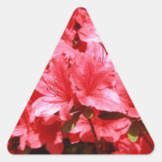 Adesivo Triangular flores do vermelho da azálea