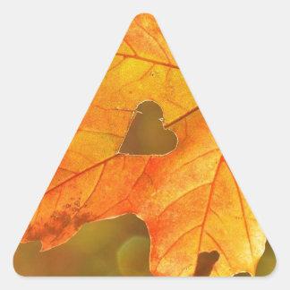 Adesivo Triangular Folha no coração