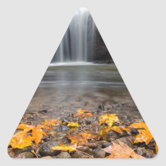 Adesivo Triangular Folhas de bordo da queda na cachoeira escondida