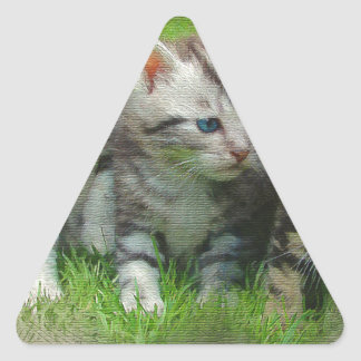 Adesivo Triangular Gatos de Kettens do estilo da aguarela