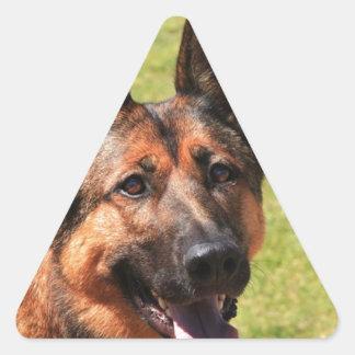 Adesivo Triangular German shepherd de Malinois do belga