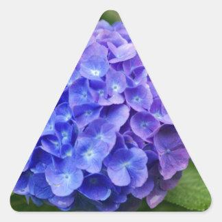 Adesivo Triangular Hydrangea francês (macrophylla do Hydrangea)