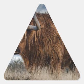 Adesivo Triangular Iaques de Brown no verde e no campo de grama de