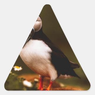 Adesivo Triangular Ilha animal de Atlântico dos animais selvagens do