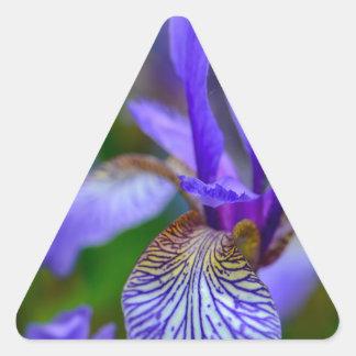 Adesivo Triangular Íris farpada