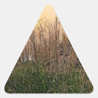 Adesivo Triangular Junco no por do sol