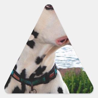 Adesivo Triangular Kevin o Dalmatian