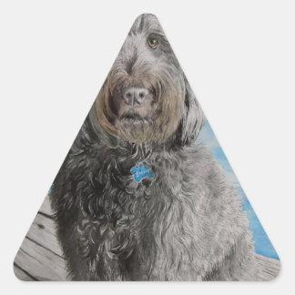 Adesivo Triangular Labradoodle Stewart