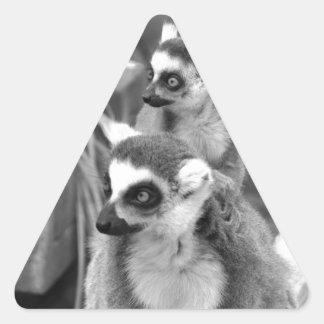 Adesivo Triangular lemur Anel-atado com o bebê preto e branco