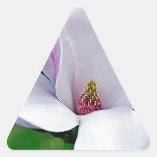 Adesivo Triangular Magnólia elegante