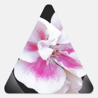 Adesivo Triangular Máscaras cor-de-rosa
