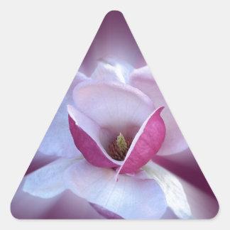 Adesivo Triangular máscaras cor-de-rosa da magnólia