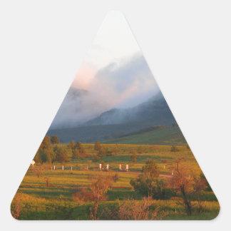 Adesivo Triangular Névoa da manhã, libra de Wilpena