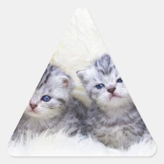 Adesivo Triangular Ninho com os quatro gatos de gato malhado novos em