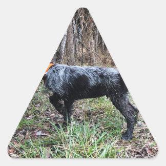 Adesivo Triangular No filhote de cachorro do ponto