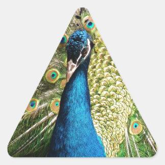 Adesivo Triangular O pavão bonito