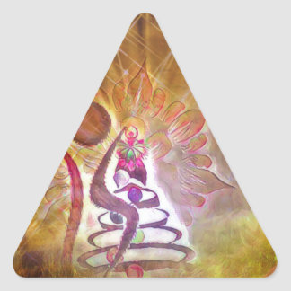 Adesivo Triangular O tolo