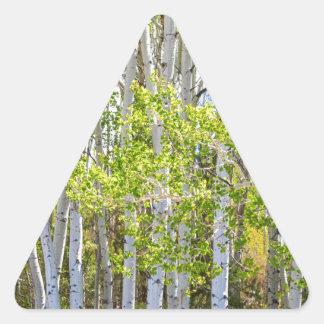 Adesivo Triangular Obtenção perdido na região selvagem