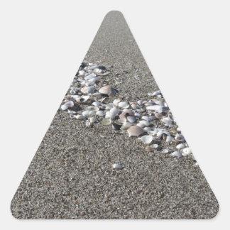 Adesivo Triangular Os Seashells no verão da areia encalham a opinião