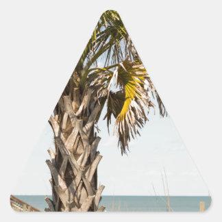 Adesivo Triangular Palmeiras no passeio à beira mar da costa leste de