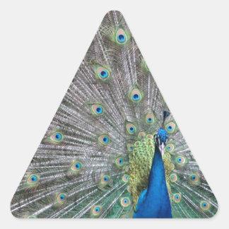 Adesivo Triangular Pavão colorido