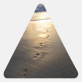 Adesivo Triangular Pegadas de desaparecimento