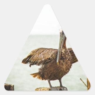 Adesivo Triangular Pelicanos empoleirados em cargos